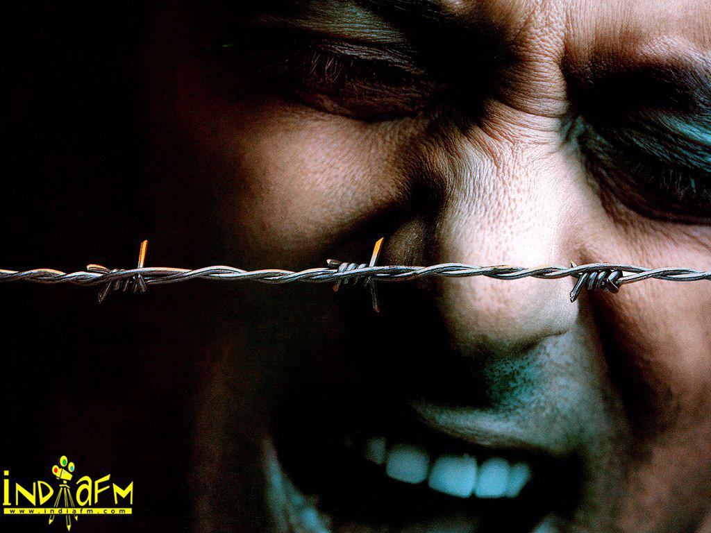 Tere Naam 2003 Wallpapers | salman-khan-207 - Bollywood Hungama