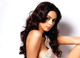 Mallika Sherawat turns singer