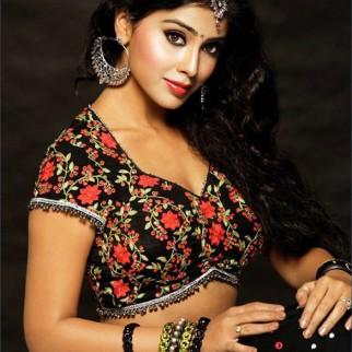 Celebrity Photo Of Shriya Saran