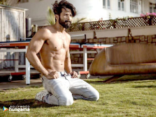 Celebrity Wallpapers of Shahid Kapoor