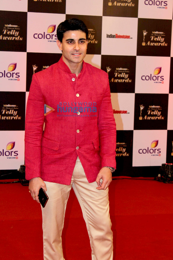 13th Indian Telly Awards 2014