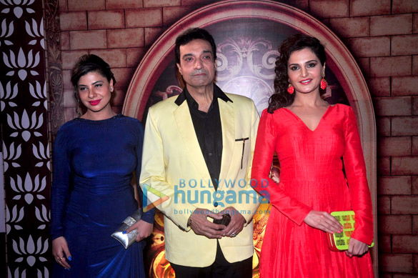Celebs grace the Zee Rishtey Awards 2014
