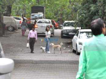 Sophie Choudry snapped taking her dog out for a walk