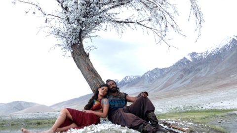 Movie Stills Of The Movie Mirzya
