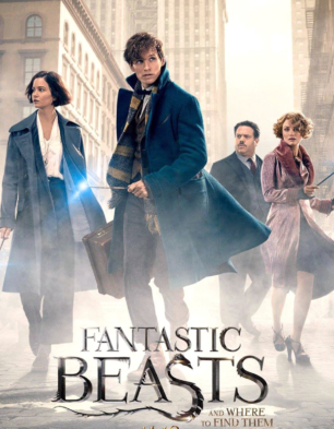 Fantastic Beasts and Where to Find Them Official ... - YouTube