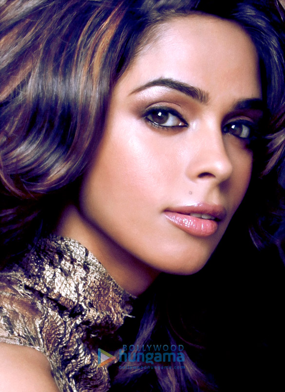 mallikasherawat128 mallika sherawat photos bollywood