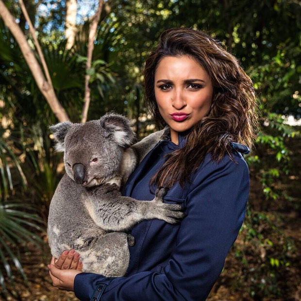 These pictures of Parineeti Chopra with Dolphins will make your day-3