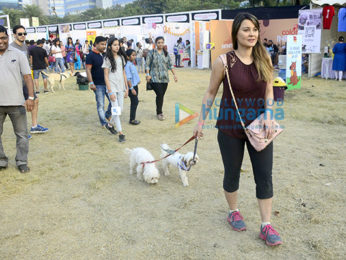 Chunkey Pandey, Minissha Lamba and Dino Morea attend the Pet Fed event