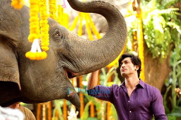 REVEALED: Vidyut Jammwal starrer Junglee to release on April 5
