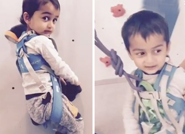 Riteish Deshmukh and Genelia's son Rahyl takes up the FITNESS CHALLENGE; calls out to Taimur Ali Khan and B-town bachha gang