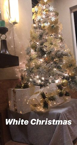 INSIDE Malaika Arora and Arjun Kapoor's Christmas celebrations (see pics)