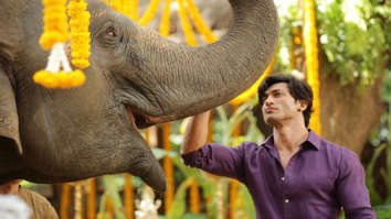 """It was the biggest high of my life when the elephant understood my command for the first time"", says Vidyut Jammwal"