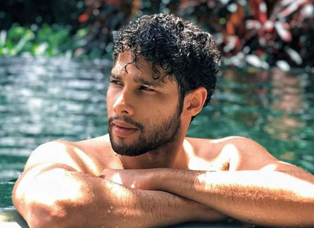 After Gully Boy, Siddhant Chaturvedi to star in Yash Raj Films' romantic comedy?