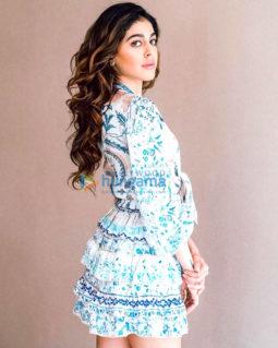Celebrity Photo Of Alaya F