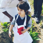 Watch: Little Taimur Ali Khan goes farming and vegetable hunting in Chandigarh