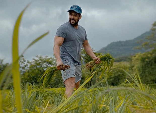 Salman Khan ushers in the harvest season at his farmhouse, pays a hearty tribute to the farmers - Bollywood Hungama