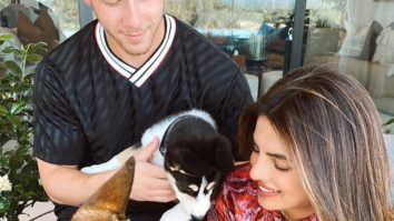 Priyanka Chopra Jonas and Nick Jonas rescue a husky, name him Panda