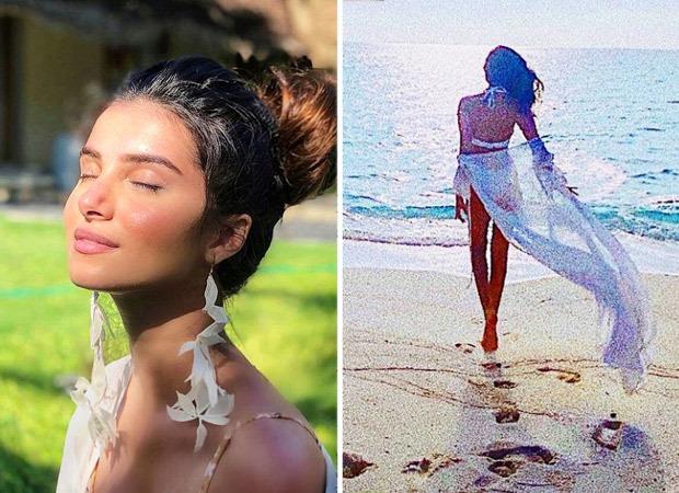 तारा सुतारिया मालदीव की निर्मल सुंदरता के बीच सफेद बिकनी में सीज़ करती हैं