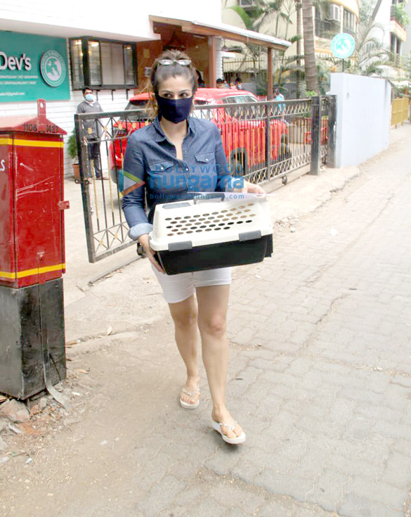 Photos Raveena Tandon spotted at a pet clinic in Khar (3)