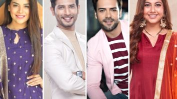Zee TV actors Anjum Fakih, Sehban Azim, Sanjay Gagnani, Reem Shaikh reminisce their best Eid celebrations
